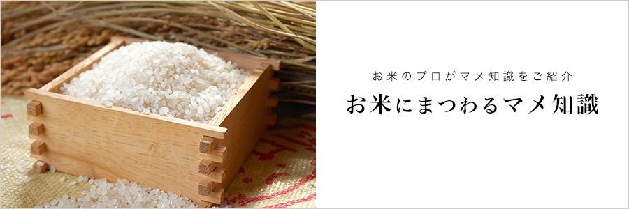 お米にまつわるマメ知識